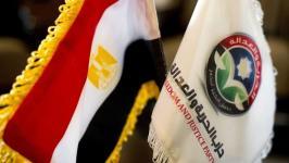 Bendera Mesir dan Partai FJP