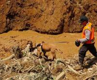 Petugas penyelamat mencari korban tanah longsor.
