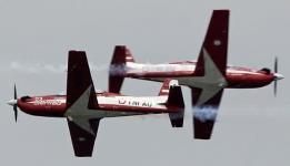 Pesawat Aerobatik
