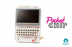 Pocket chip
