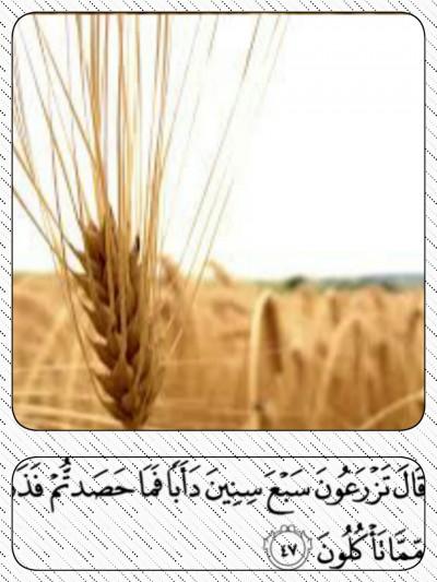 Tahun dalam Al-Qur'an
